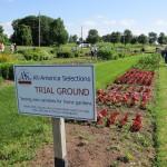 PHS 2017 Bus Tour - Trial Gardens