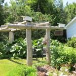 A lovely Brechin Garden